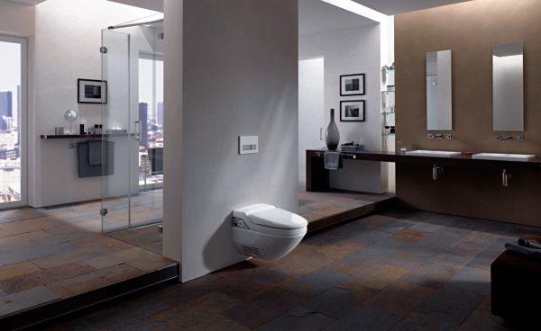 http://www.btmarket.com.ua/img_upl2/Geberit-Aqua-Clean-Toilet-Seat-with-Spray-Function.jpg